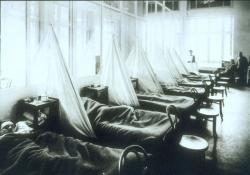US Camp Hospital Influenza Ward