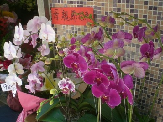 Gorgeous orchids and mosaic are a tribute to an Asian mother.
