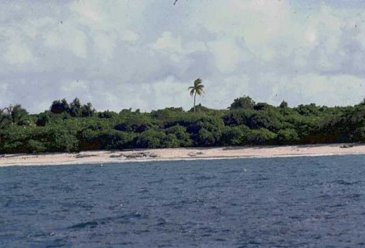 Beach at the Bikini Island Atoll