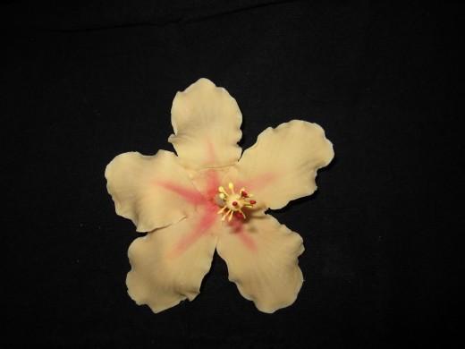 Orange Gumpaste Hibiscus Flowers made my me