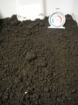 worm castings and soil by cursedthing on Flickr
