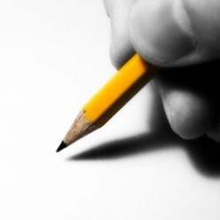 Language Skills Essay