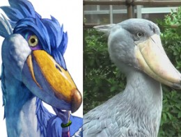 Left: LoftwingRight: ShoebillI think you get it.