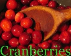 Cranberry Recipes and More