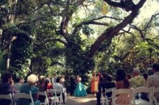 Wedding under the oak pavilion at Sunken Gardens wedding venue in St Petersburg, FL