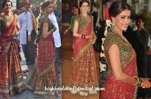 Genelia D'souza in a beautiful saree