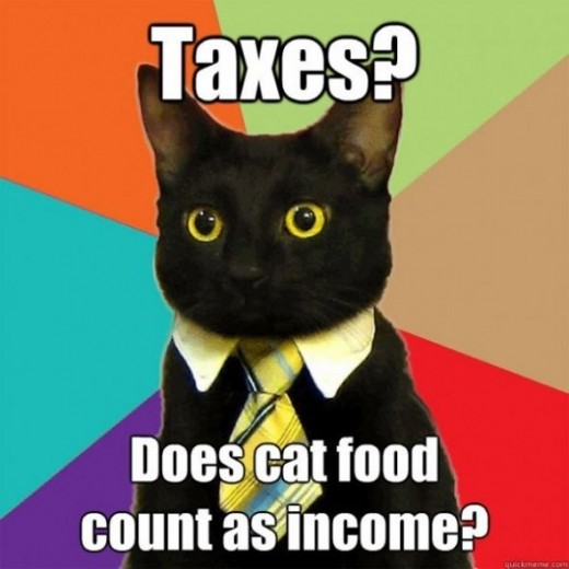 cat taxes funny pictures