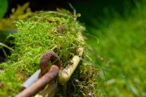 A good ridge of moss above the rim helps prevent water and soil from escaping when watering.  As well, over time, moss will shrink as it starts to dry up.