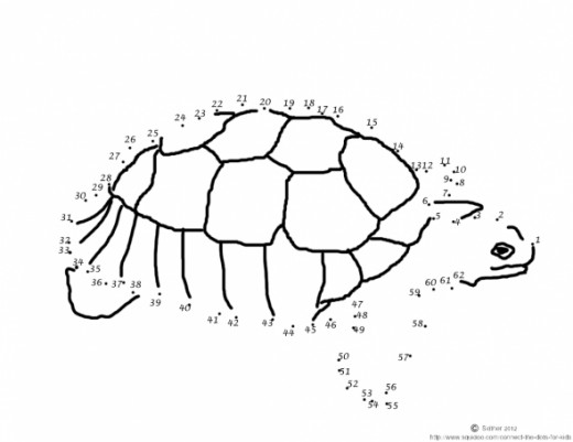 Free printable turtle dot to dot activity for kids