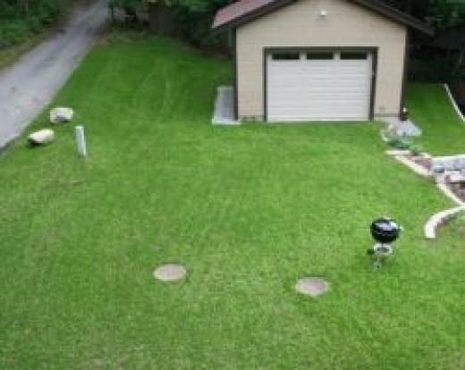 green grass driveway!