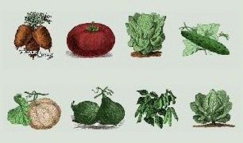 Plant Heirloom Seeds To Help Preserve Our Plant Heritage For Future Generations!