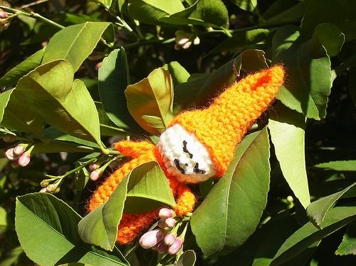 Sleepy Orange Gnome