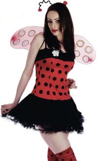 Ladies Ladybird Costume