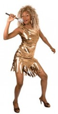 Tina Turner Costume