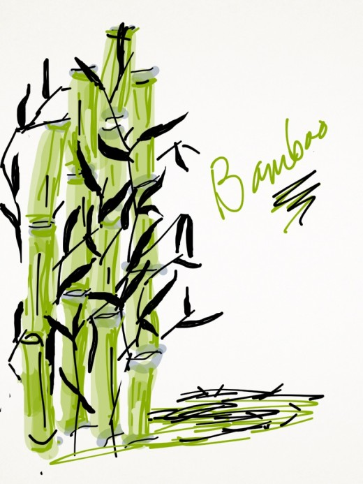 Original bamboo drawing.