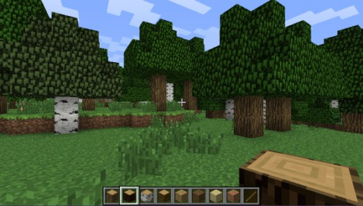 There are four different kinds of wood in Minecraft.