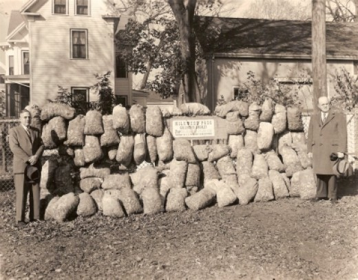 Milkweed Pods, Union Street School, Middleborough, MA, photograph by Horace K. Atkins, November, 1944. (Middleboro Gazette)