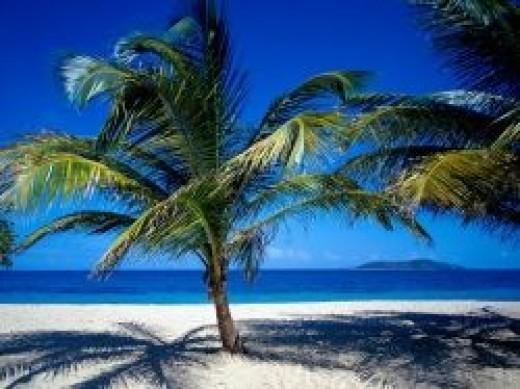 Places: beach