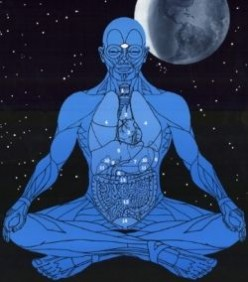 CHI, QIGONG; MASTERING THE FORCE