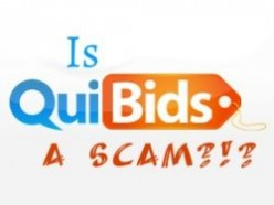 What is Quibids and Is it Safe or a Scam?