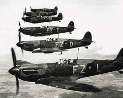 WWII RAF Spitfires flying in formation