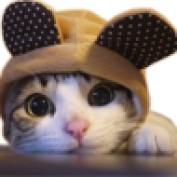 Gigmoo profile image