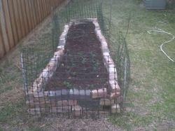 My raised bed garden