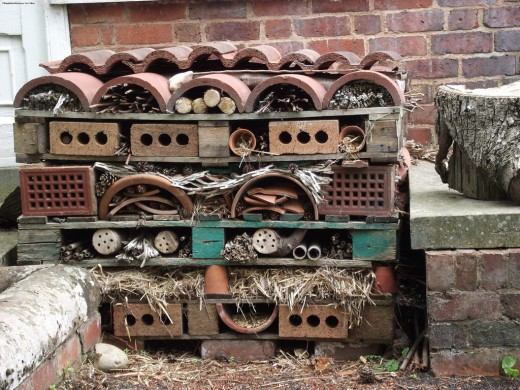 This hibernaculum makes great use of of an odd space to create an interesting and varied bug hotel.Photo credit: http://tinyurl.com/pavhnom