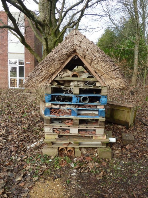 Thatch is a great habitat for some animals. If you know a thatcher why not build a roof on your hibernaculum? Photo credit: http://tinyurl.com/paeq57y