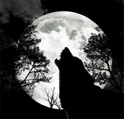 Be The Lone Wolf Again!