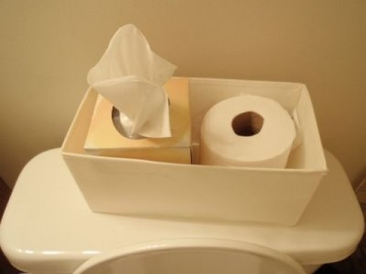 Tissues & Toilet Paper in the Guest Bathroom