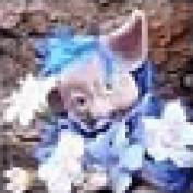 Puckwudgie profile image