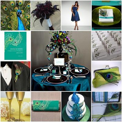 Peacock Themed Wedding - Peacock Reception Accessories