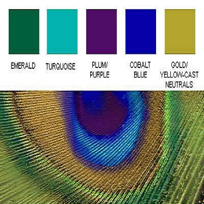 Peacock Themed Wedding - Peacock Color Palette