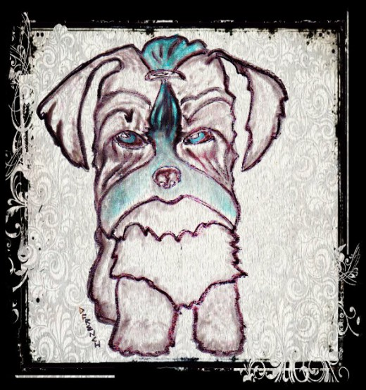 Blueberry Morkie drawing by Darcie French