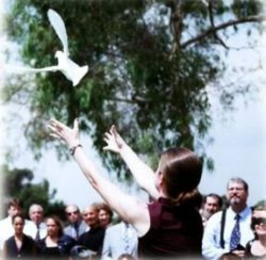 Releasing a dove at a memorial