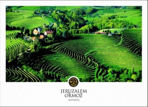 slovenian moscato wines