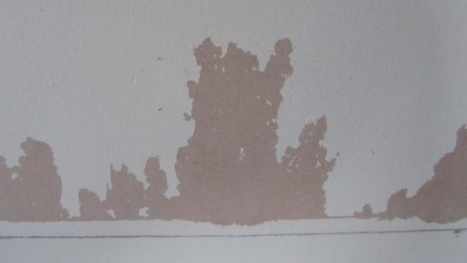 Example of Flaky Paint on a Stripped Plaster Wall