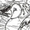 knitowl profile image