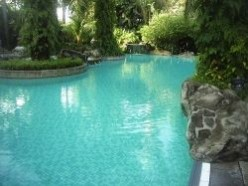 Inground pool care the cheap and easy way