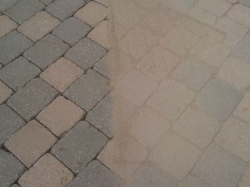 Polymeric Sand Replacement