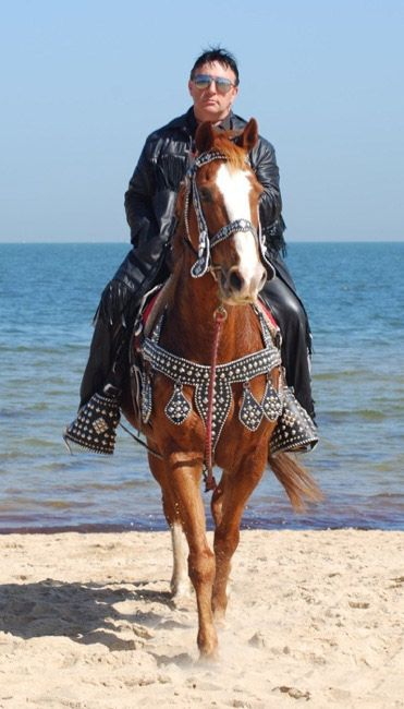 "No relation to the Old Spice Guy (""I'm on a horse!""). But the horse has dressed up for the outing with full saddle bling"