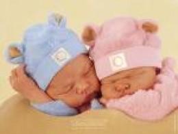 Anne Geddes - 2 Babies