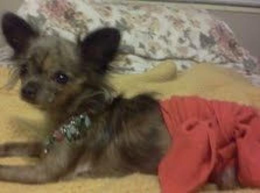 How do you like my sarong?