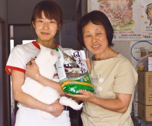 Car Donations Provide Aid To Tsunami Victims!