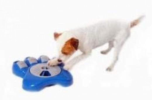 aikiou interactive dog food bowl