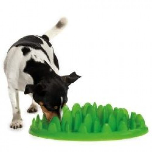 green feeder bowl