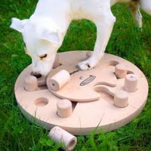 dog worker puzzle