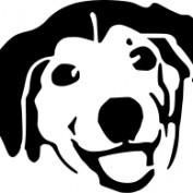 akataRadu profile image
