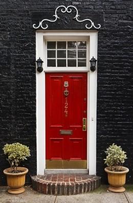 Red door with black bricks